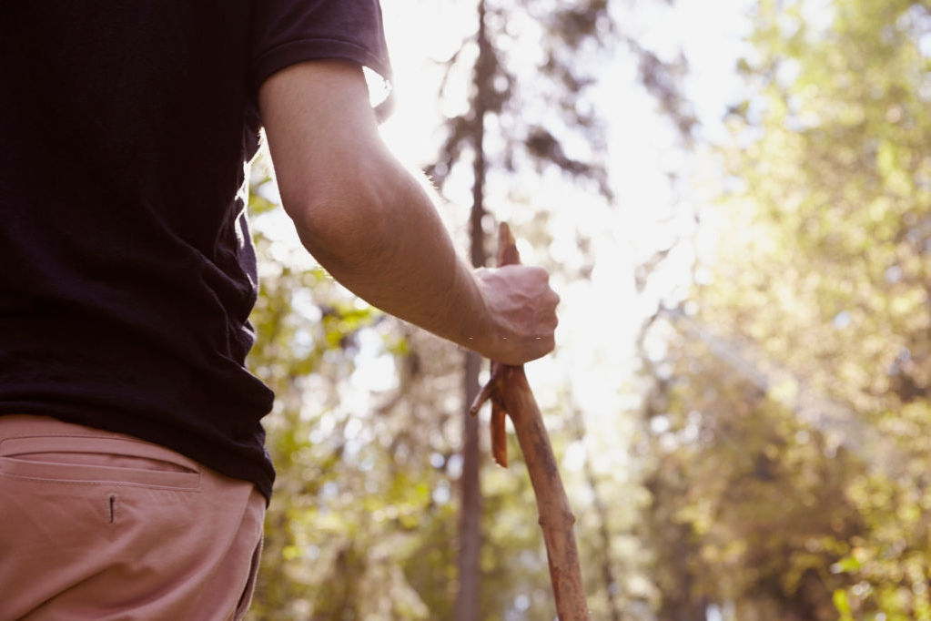 Stop Using Your Hands Here and There (Snake Bite: The Ultimate Survival Guide for the Wilderness)