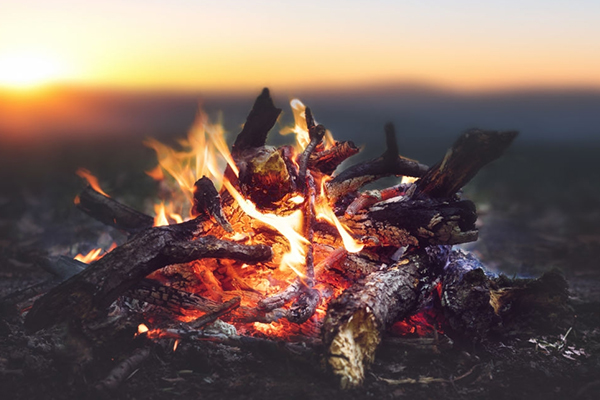 Fire!(The Ultimate Guide on Surviving in the Woods)