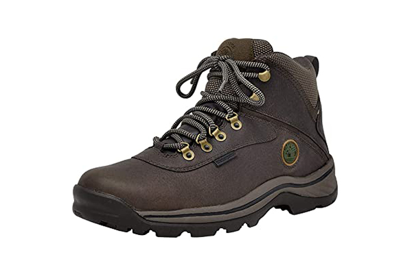 Timberland White Ledge Mid Men's Hiking Boots (best hiking & trekking shoes )