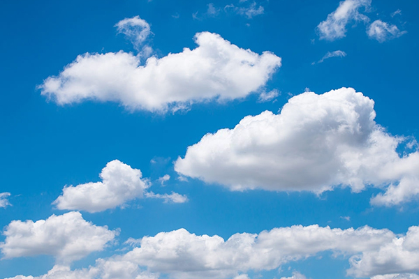 Cumulus (How To Predict Rain Or Storm In The Wild)