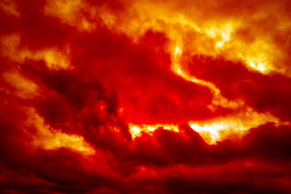 Do you see a red sky? (How To Predict Rain Or Storm In The Wild)