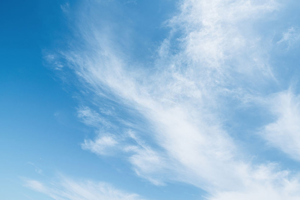 Cirrus (How To Predict Rain Or Storm In The Wild)